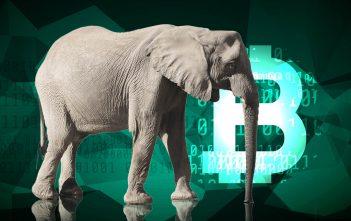 MIT Sloan Fellow und Ex-JPMorgan-Bankerin Jennifer Jiang über den wahren Wert von Bitcoin.
